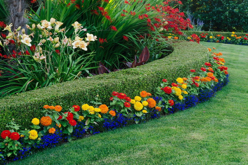 how to hire landscaping professionals for your hoa in denver